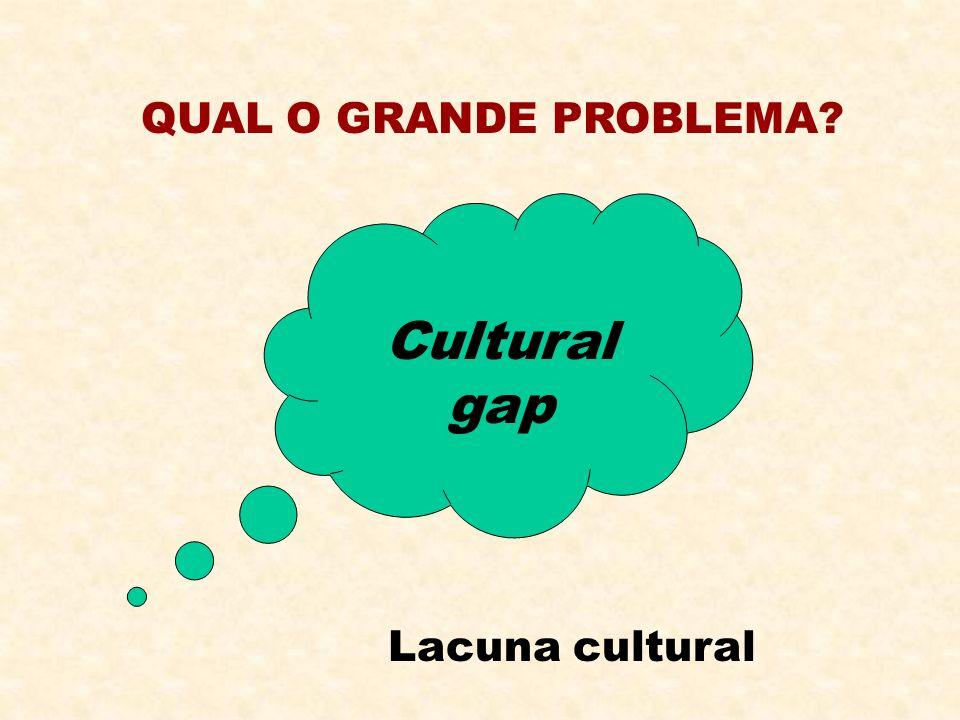 QUAL O GRANDE PROBLEMA? Cultural gap Lacuna cultural