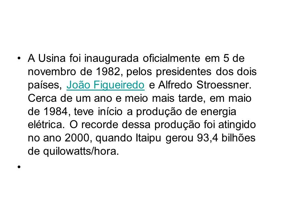 A Usina foi inaugurada oficialmente em 5 de novembro de 1982, pelos presidentes dos dois países, João Figueiredo e Alfredo Stroessner. Cerca de um ano
