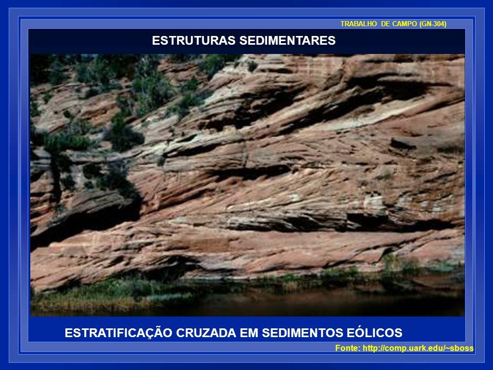 ESTRUTURAS SEDIMENTARES ESTRATIFICAÇÃO CRUZADA EM SEDIMENTOS EÓLICOS Fonte: http://comp.uark.edu/~sboss TRABALHO DE CAMPO (GN-304)