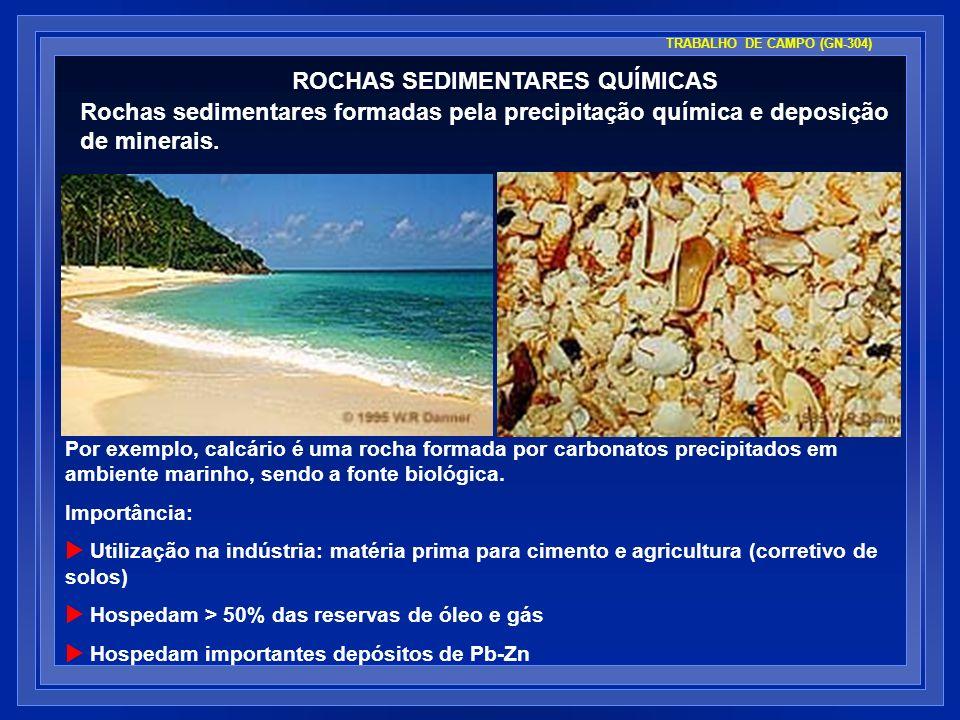 Por exemplo, calcário é uma rocha formada por carbonatos precipitados em ambiente marinho, sendo a fonte biológica. Importância: Utilização na indústr