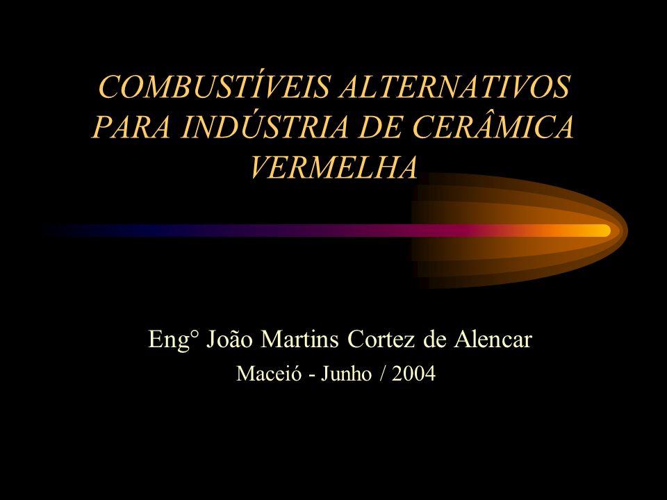 COMBUSTÍVEIS ALTERNATIVOS PARA INDÚSTRIA DE CERÂMICA VERMELHA Eng° João Martins Cortez de Alencar Maceió - Junho / 2004