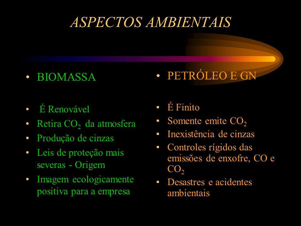 ASPECTOS AMBIENTAIS BIOMASSA É Renovável Retira CO 2 da atmosfera Produção de cinzas Leis de proteção mais severas - Origem Imagem ecologicamente posi
