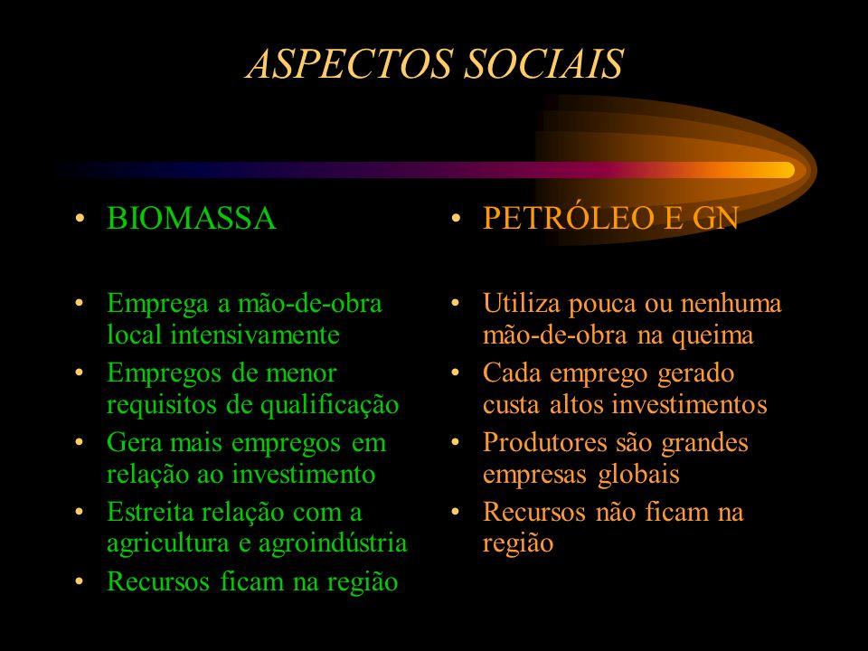 ASPECTOS SOCIAIS BIOMASSA Emprega a mão-de-obra local intensivamente Empregos de menores requisitos de qualificação Gera mais empregos em relação ao i