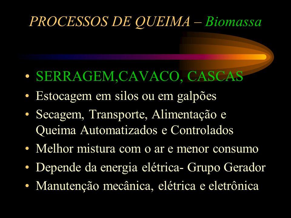 PROCESSOS DE QUEIMA – Biomassa LENHA Queima simples - Fornalhas, grelhas, cinzeiros Depende do homem - Curva irregular Pirometria somente para orienta