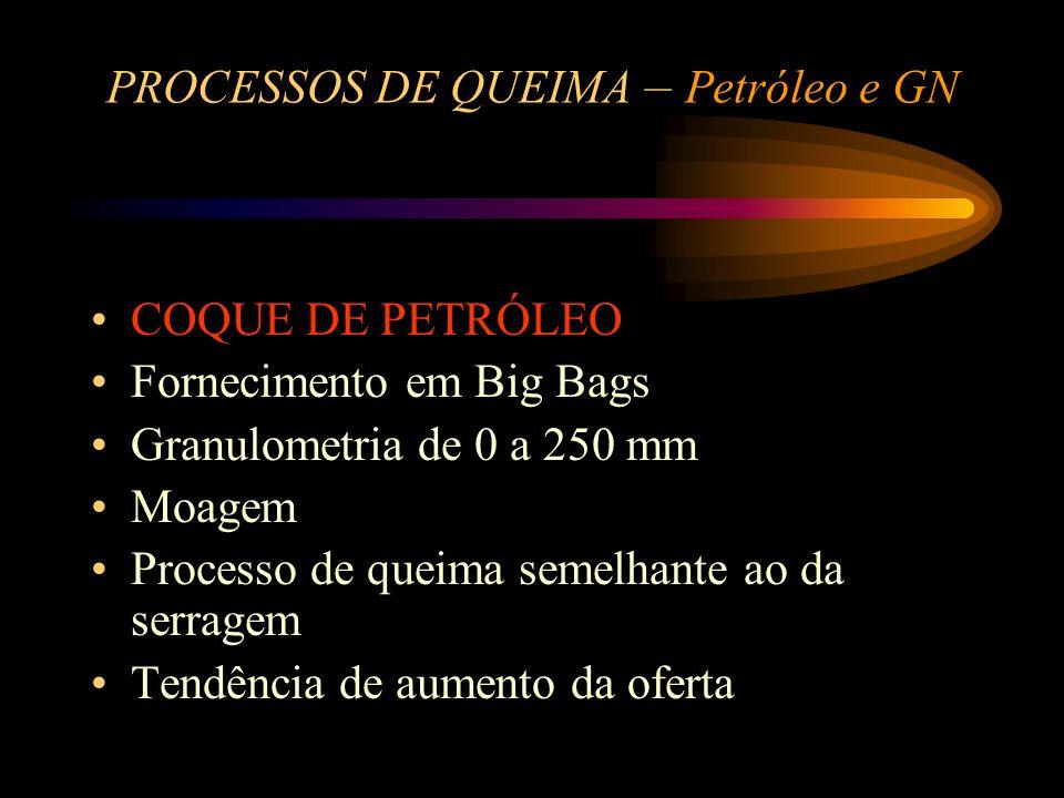 PROCESSOS DE QUEIMA – Petróleo e GN GÁS NATURAL - GN Localização próxima ao gasoduto Não existe estoque - Fornecimento contínuo Reserva de gás GLP Mai