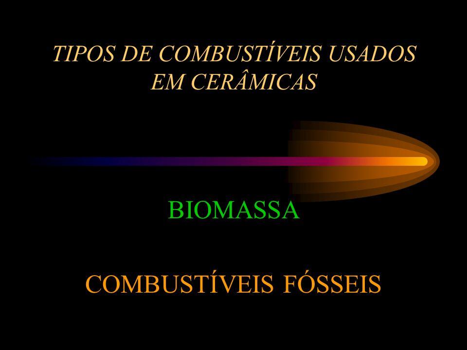 TIPOS DE COMBUSTÍVEIS USADOS EM CERÂMICAS BIOMASSA COMBUSTÍVEIS FÓSSEIS
