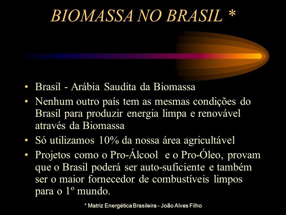 TIPOS DE BIOMASSA Lenha Nativa - Espécies Diversas Lenha de Reflorestamento - Eucalipto, Pinho, Sabiá, Bambu, etc. Cavaco (Lenha Picada), serragem, ma