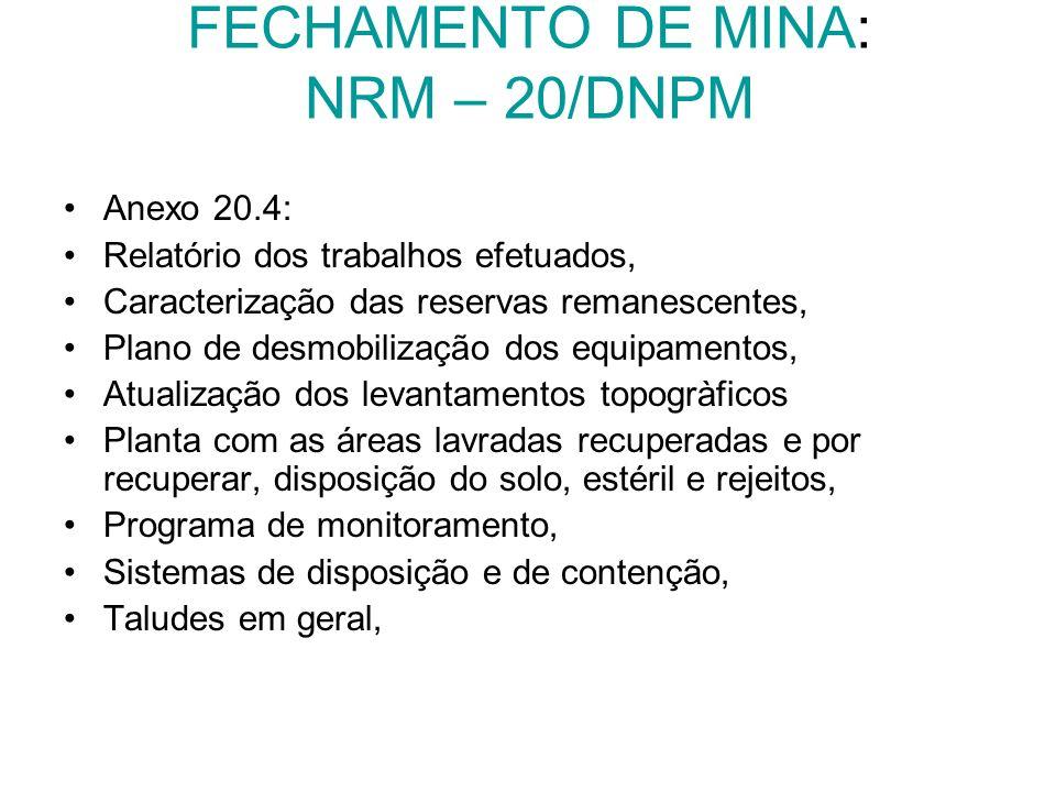 FECHAMENTO DE MINA: NRM – 20/DNPM Anexo 20.4: Relatório dos trabalhos efetuados, Caracterização das reservas remanescentes, Plano de desmobilização do