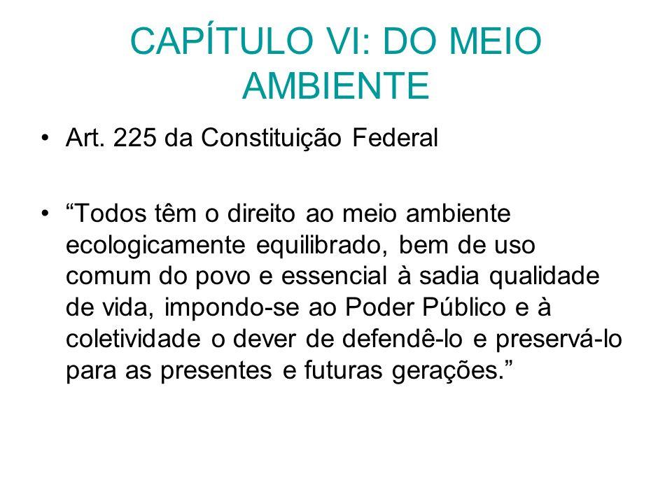 CAPÍTULO VI: DO MEIO AMBIENTE Art. 225 da Constituição Federal Todos têm o direito ao meio ambiente ecologicamente equilibrado, bem de uso comum do po