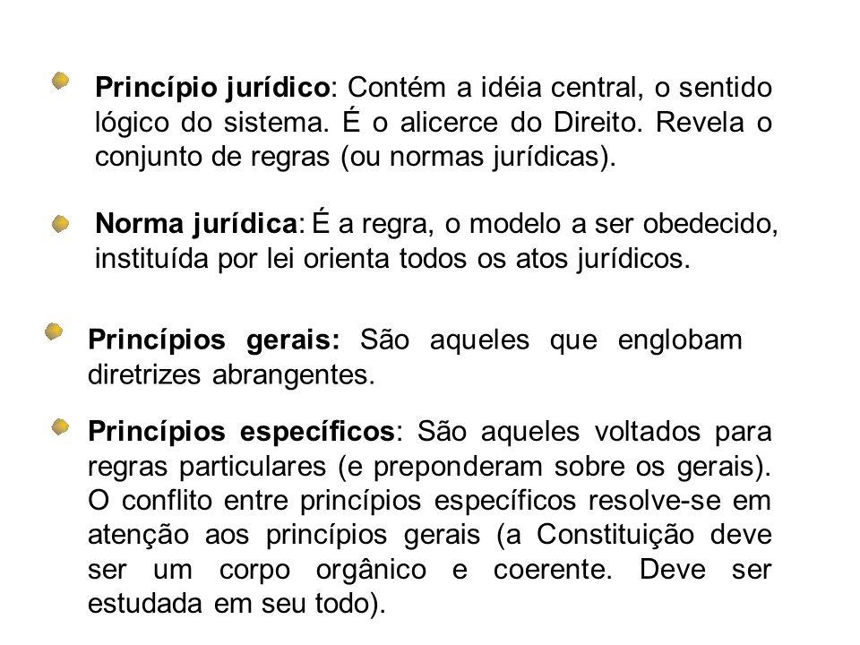 Princípio jurídico: Contém a idéia central, o sentido lógico do sistema. É o alicerce do Direito. Revela o conjunto de regras (ou normas jurídicas). N