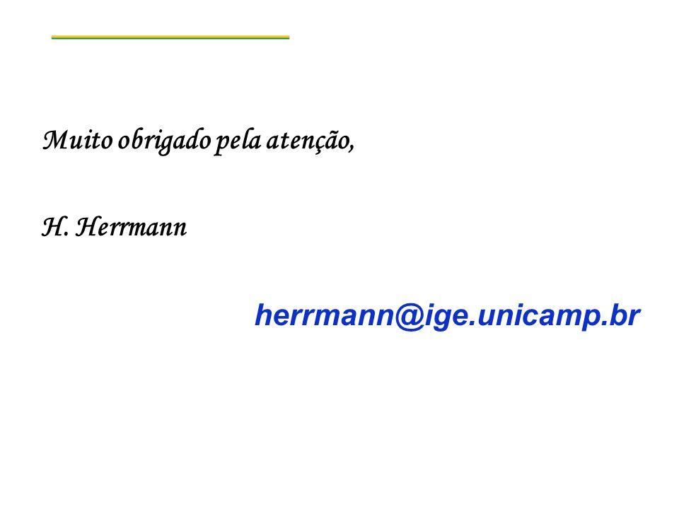 Muito obrigado pela atenção, H. Herrmann herrmann@ige.unicamp.br