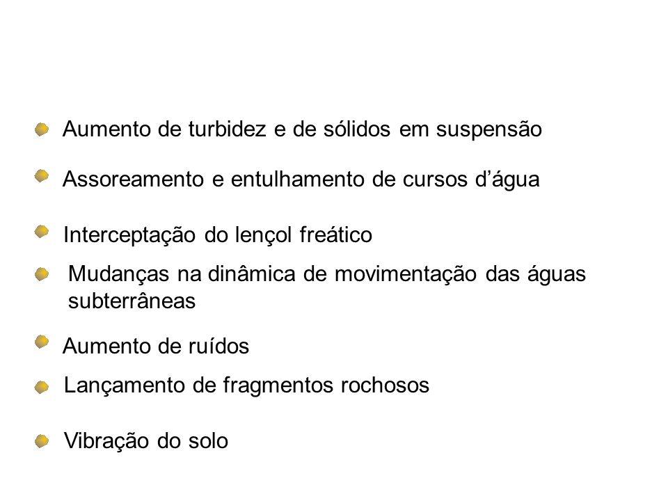 1.Dominialidade em favor da união (art. 20 e 176 da C.F.); 2.