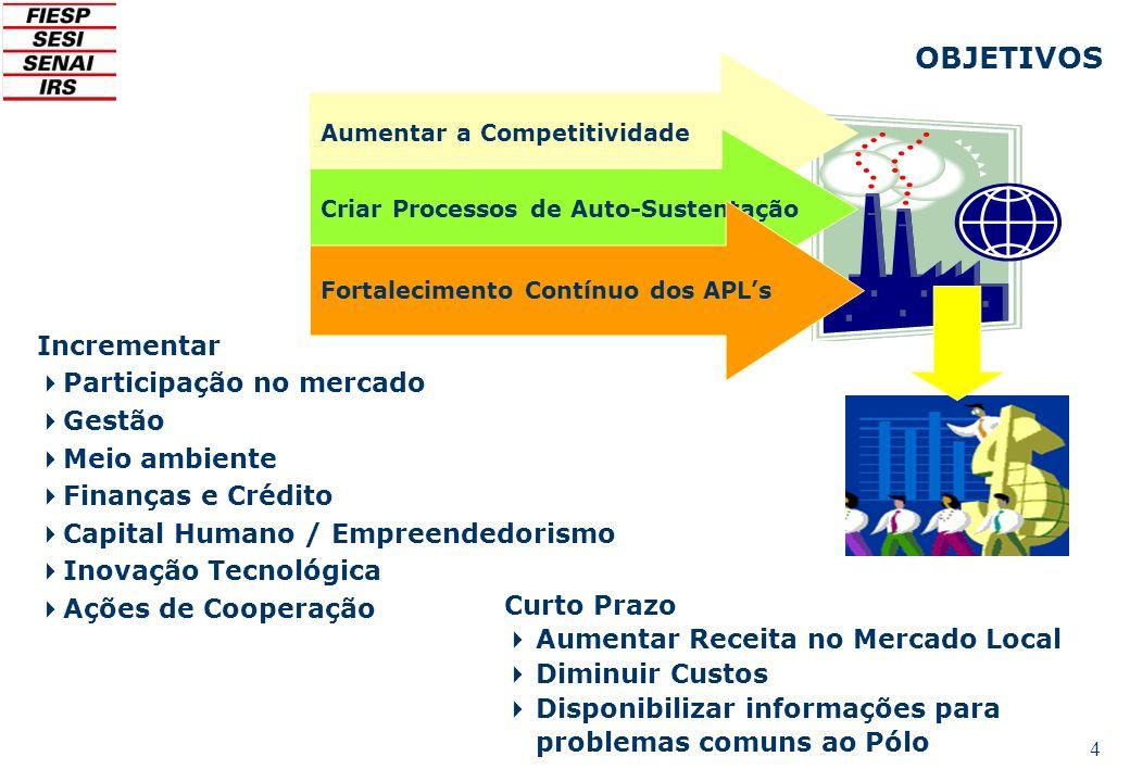 4 Aumentar a Competitividade Criar Processos de Auto-Sustentação Fortalecimento Contínuo dos APLs Incrementar Participação no mercado Gestão Meio ambi