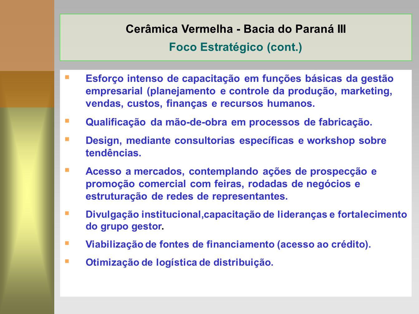 16 Cerâmica Vermelha - Bacia do Paraná III Foco Estratégico (cont.) Esforço intenso de capacitação em funções básicas da gestão empresarial (planejame