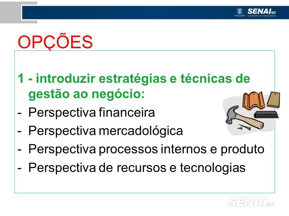 OPÇÕES 1 - introduzir estratégias e técnicas de gestão ao negócio: -Perspectiva financeira -Perspectiva mercadológica -Perspectiva processos internos