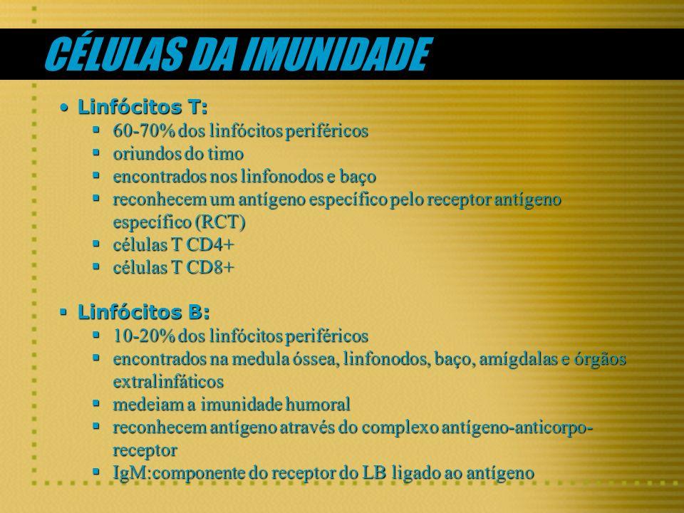 CÉLULAS DA IMUNIDADE Linfócitos T:Linfócitos T: 60-70% dos linfócitos periféricos 60-70% dos linfócitos periféricos oriundos do timo oriundos do timo