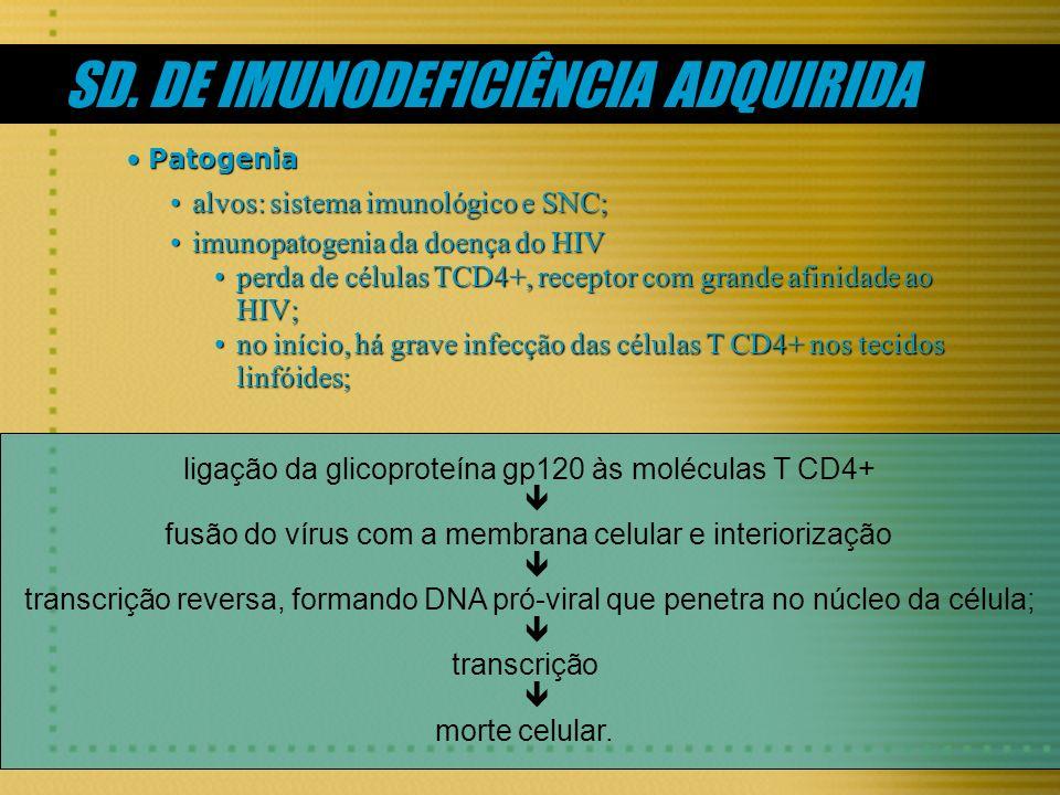 ligação da glicoproteína gp120 às moléculas T CD4+ fusão do vírus com a membrana celular e interiorização transcrição reversa, formando DNA pró-viral