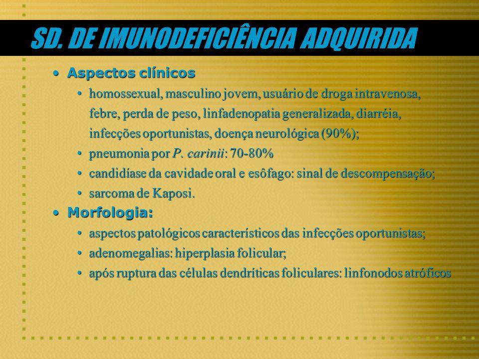 SD. DE IMUNODEFICIÊNCIA ADQUIRIDA Aspectos clínicosAspectos clínicos homossexual, masculino jovem, usuário de droga intravenosa, febre, perda de peso,