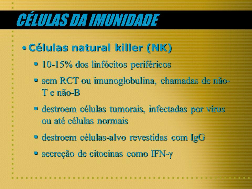 CÉLULAS DA IMUNIDADE Células natural killer (NK)Células natural killer (NK) 10-15% dos linfócitos periféricos 10-15% dos linfócitos periféricos sem RC