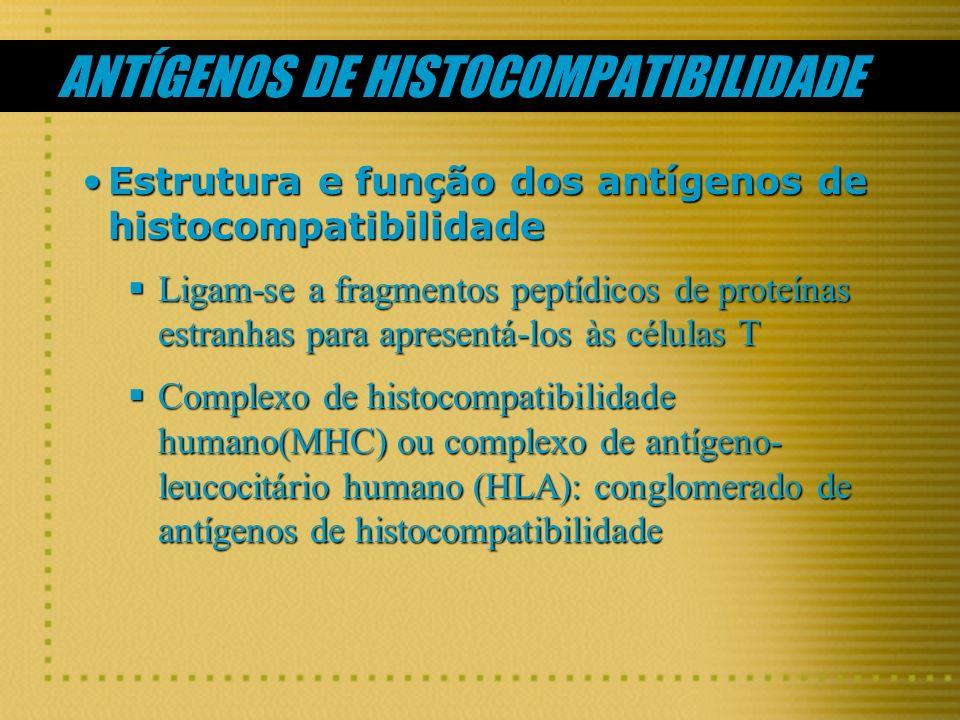 ANTÍGENOS DE HISTOCOMPATIBILIDADE Estrutura e função dos antígenos de histocompatibilidadeEstrutura e função dos antígenos de histocompatibilidade Lig