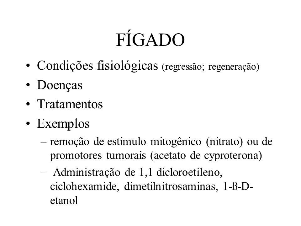 FÍGADO Condições fisiológicas (regressão; regeneração) Doenças Tratamentos Exemplos –remoção de estimulo mitogênico (nitrato) ou de promotores tumorai