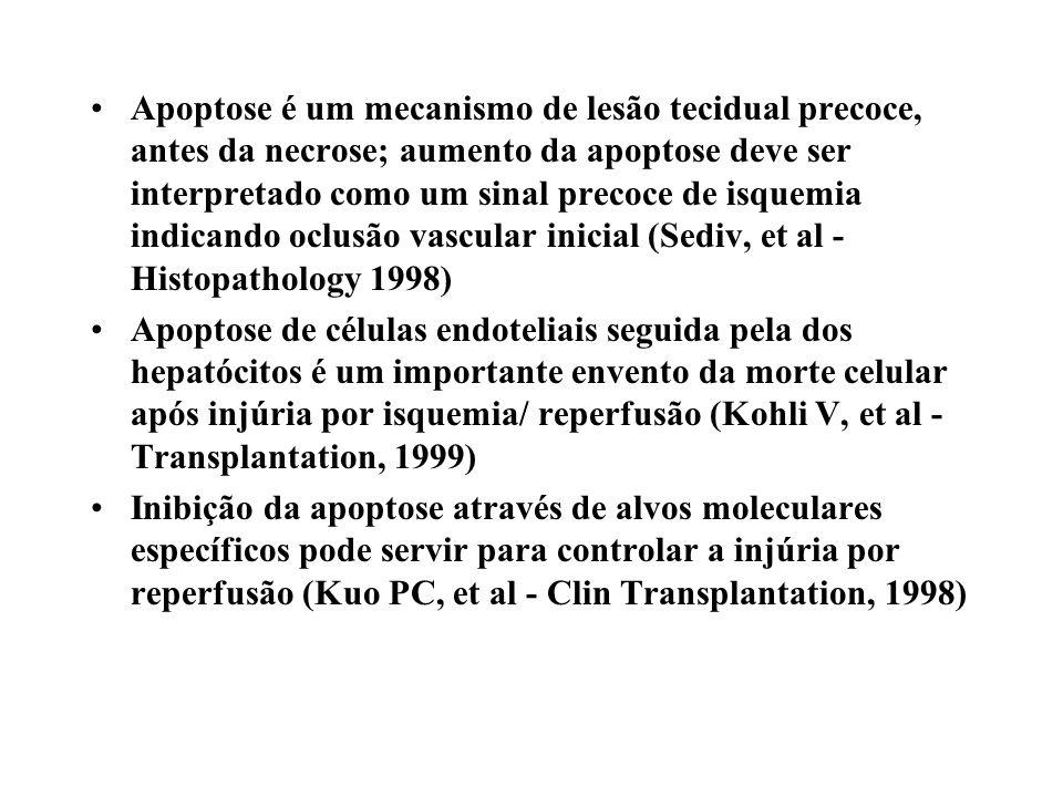 Apoptose é um mecanismo de lesão tecidual precoce, antes da necrose; aumento da apoptose deve ser interpretado como um sinal precoce de isquemia indic