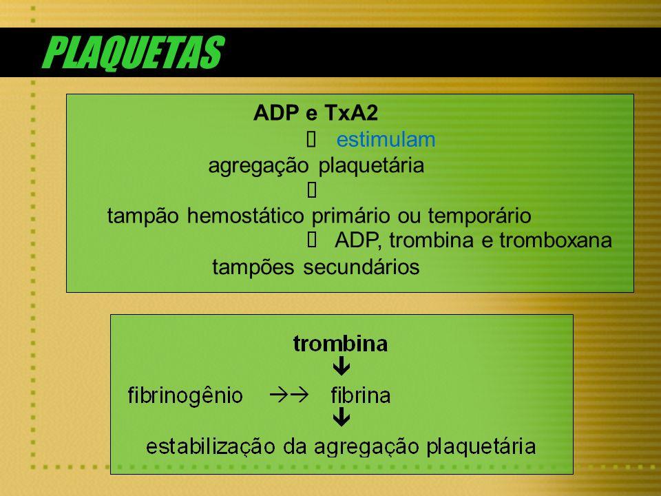 ADP e TxA2 estimulam agregação plaquetária tampão hemostático primário ou temporário ADP, trombina e tromboxana tampões secundários PLAQUETAS