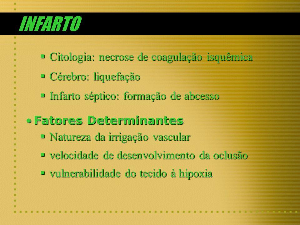 INFARTO Citologia: necrose de coagulação isquêmica Citologia: necrose de coagulação isquêmica Cérebro: liquefação Cérebro: liquefação Infarto séptico: