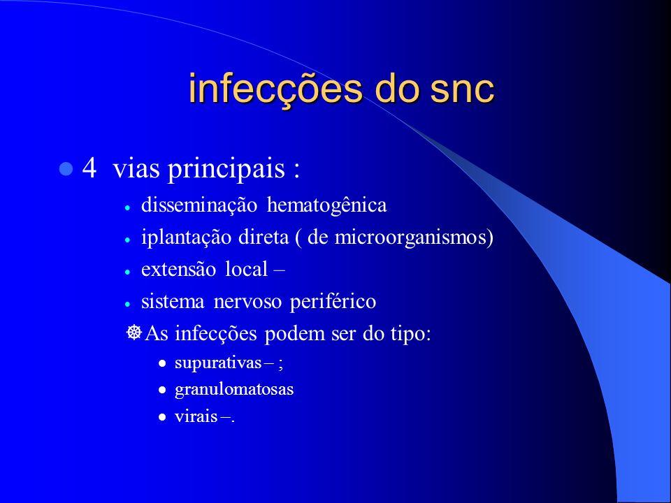 infecções do snc infecções do snc 4 vias principais : disseminação hematogênica iplantação direta ( de microorganismos) extensão local – sistema nervo