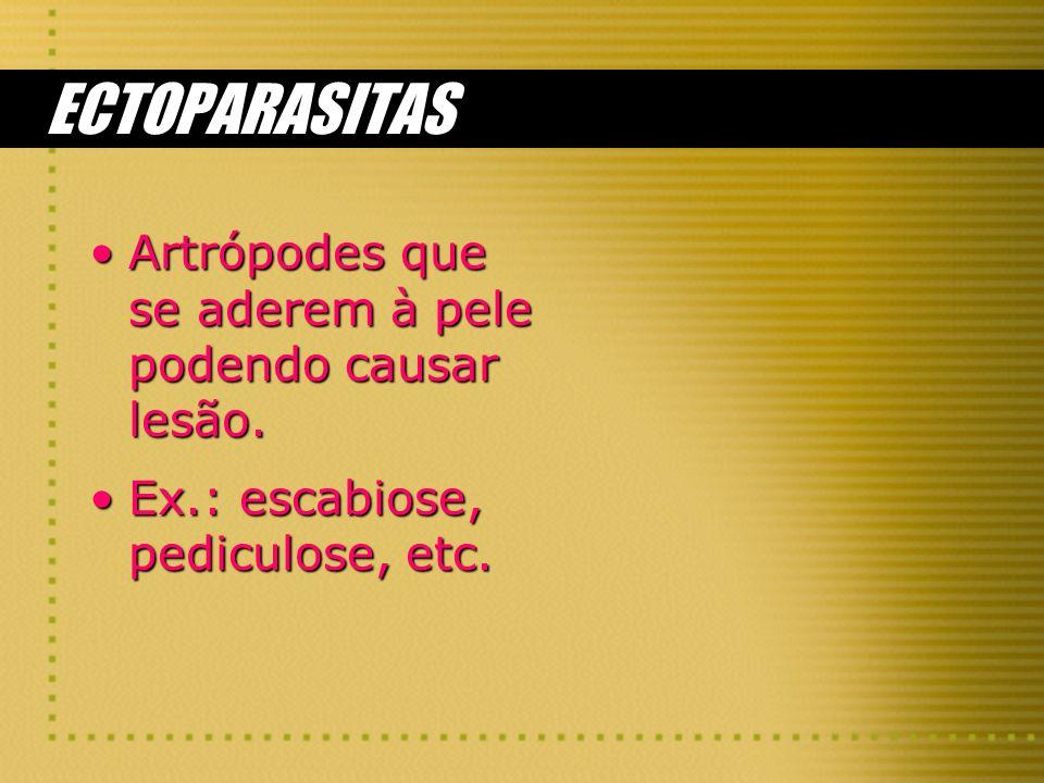 ECTOPARASITAS Artrópodes que se aderem à pele podendo causar lesão.Artrópodes que se aderem à pele podendo causar lesão. Ex.: escabiose, pediculose, e