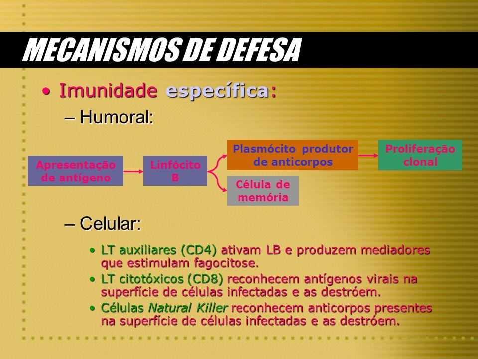 MECANISMOS DE DEFESA Imunidade específica:Imunidade específica: –Humoral: –Celular: LT auxiliares (CD4) ativam LB e produzem mediadores que estimulam