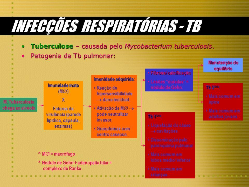 INFECÇÕES RESPIRATÓRIAS - TB Tuberculose – causada pelo Mycobacterium tuberculosis.Tuberculose – causada pelo Mycobacterium tuberculosis. Patogenia da