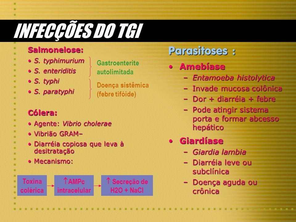 INFECÇÕES DO TGI Salmonelose: S. typhimuriumS. typhimurium S. enteriditisS. enteriditis S. typhiS. typhi S. paratyphiS. paratyphiCólera: Agente: Vibri