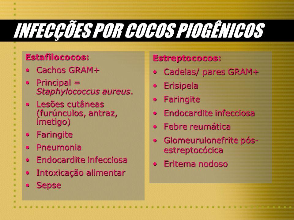 INFECÇÕES POR COCOS PIOGÊNICOS Estafilococos: Cachos GRAM+Cachos GRAM+ Principal = Staphylococcus aureus.Principal = Staphylococcus aureus. Lesões cut