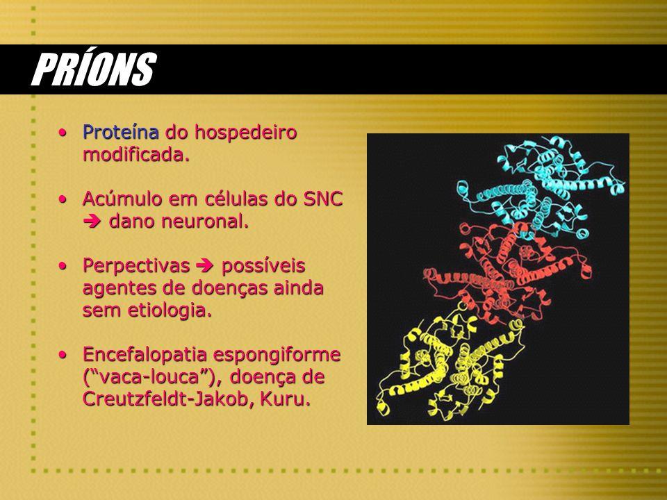 PRÍONS Proteína do hospedeiro modificada.Proteína do hospedeiro modificada. Acúmulo em células do SNC dano neuronal.Acúmulo em células do SNC dano neu