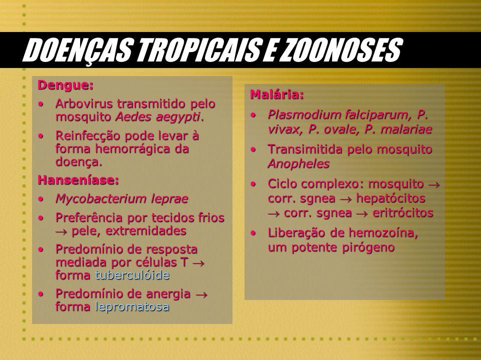 DOENÇAS TROPICAIS E ZOONOSES Dengue: Arbovirus transmitido pelo mosquito Aedes aegypti.Arbovirus transmitido pelo mosquito Aedes aegypti. Reinfecção p