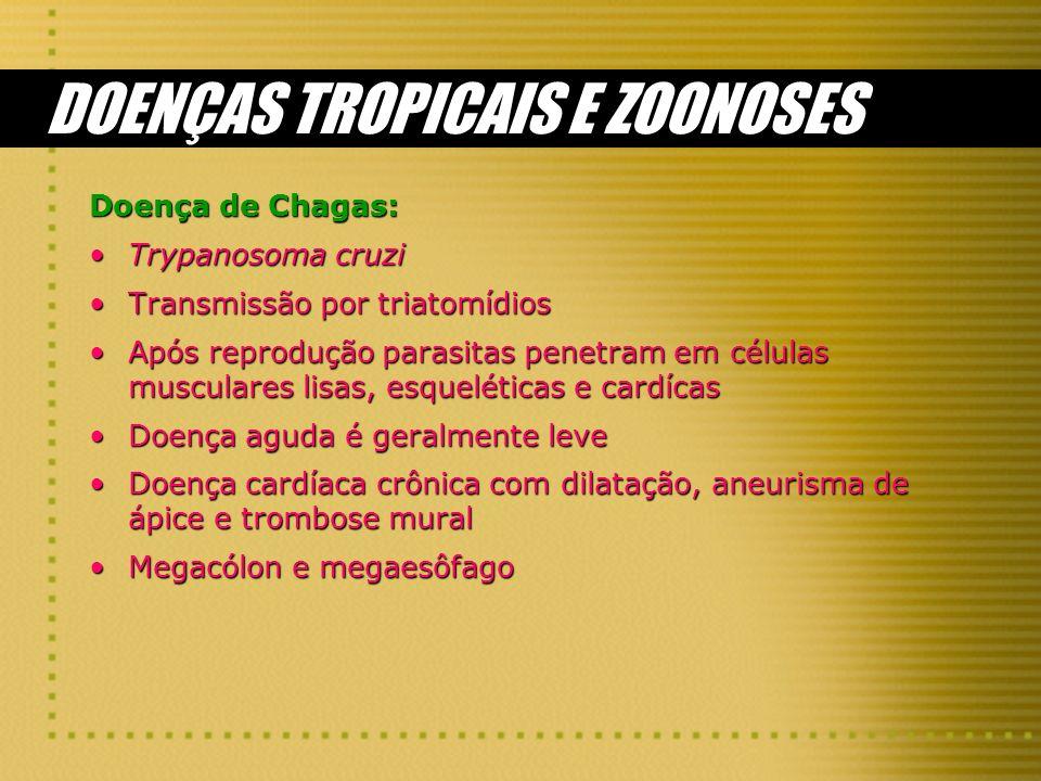 DOENÇAS TROPICAIS E ZOONOSES Doença de Chagas: Trypanosoma cruziTrypanosoma cruzi Transmissão por triatomídiosTransmissão por triatomídios Após reprod
