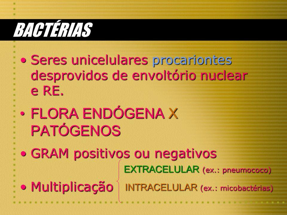 BACTÉRIAS Seres unicelulares procariontes desprovidos de envoltório nuclear e RE.Seres unicelulares procariontes desprovidos de envoltório nuclear e R