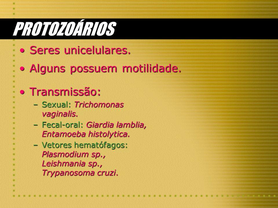 PROTOZOÁRIOS Seres unicelulares.Seres unicelulares. Alguns possuem motilidade.Alguns possuem motilidade. Transmissão: –Sexual: Trichomonas vaginalis.