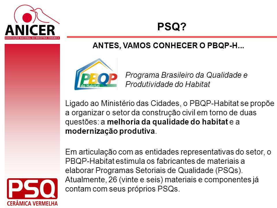 Os PSQs são elaborados, discutidos e implementados pelo setor produtivo, com a coordenação de uma entidade ou associação representativa de abrangência nacional (Anicer).