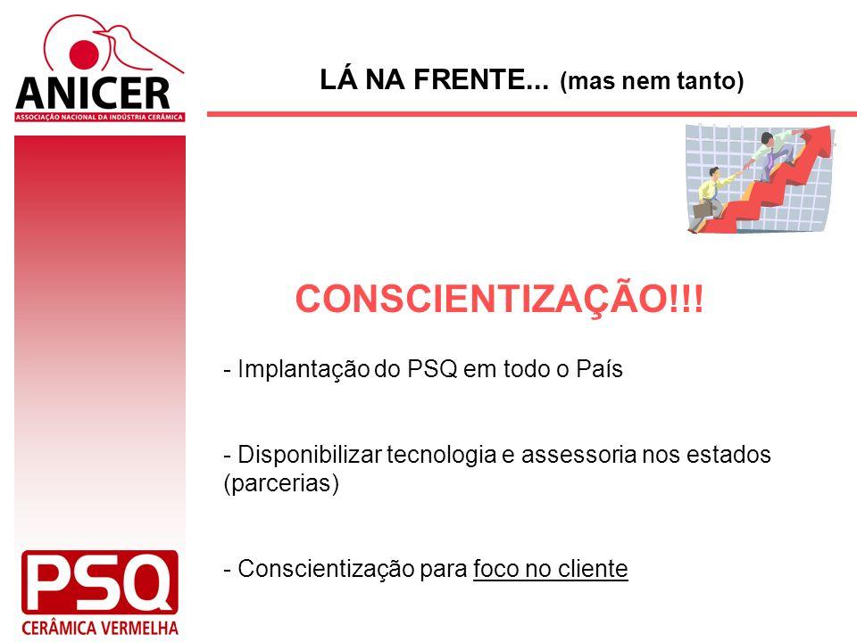 LÁ NA FRENTE... (mas nem tanto) - Implantação do PSQ em todo o País - Disponibilizar tecnologia e assessoria nos estados (parcerias) - Conscientização