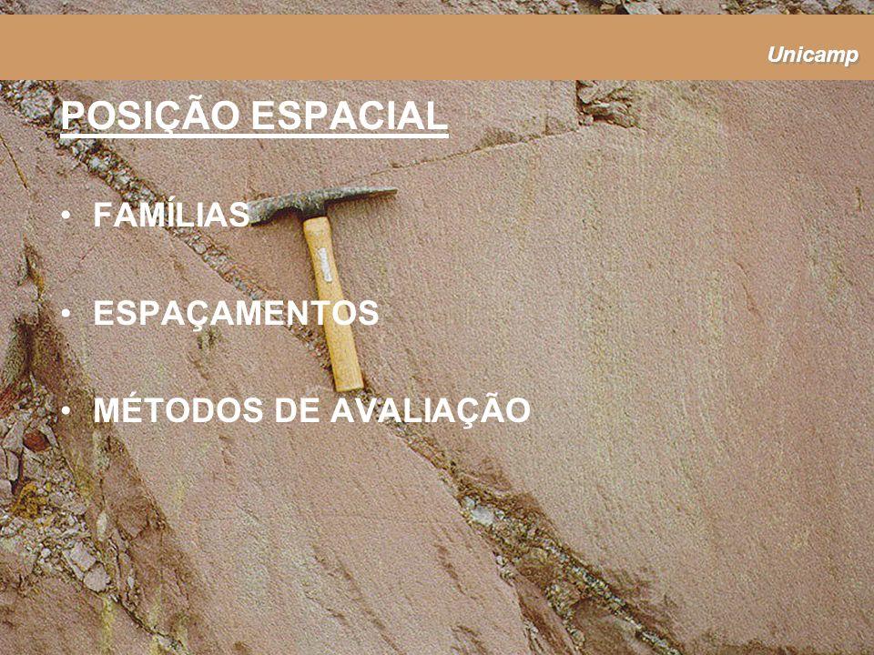 Unicamp FAMÍLIAS ESPAÇAMENTOS MÉTODOS DE AVALIAÇÃO POSIÇÃO ESPACIAL