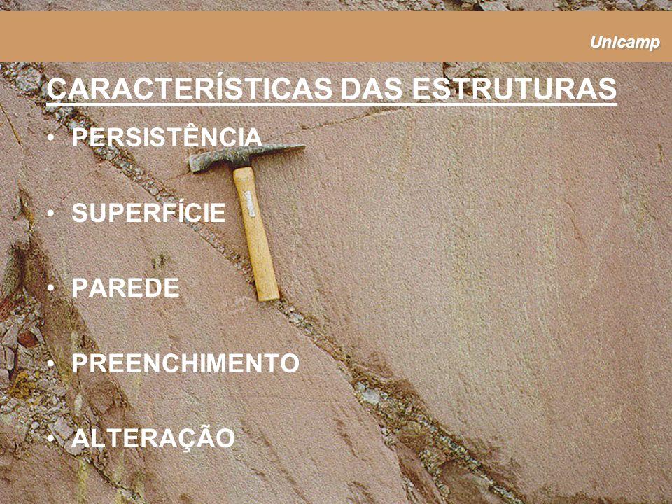 Unicamp CARACTERÍSTICAS DAS ESTRUTURAS PERSISTÊNCIA SUPERFÍCIE PAREDE PREENCHIMENTO ALTERAÇÃO