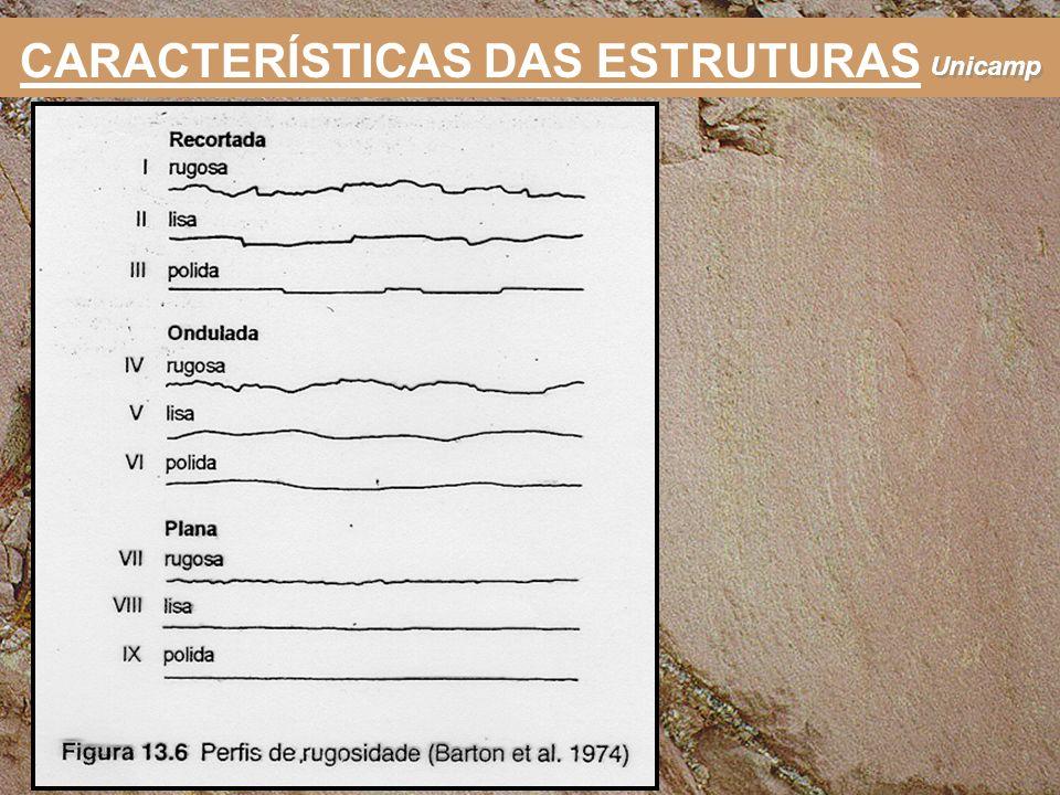 Unicamp CARACTERÍSTICAS DAS ESTRUTURAS