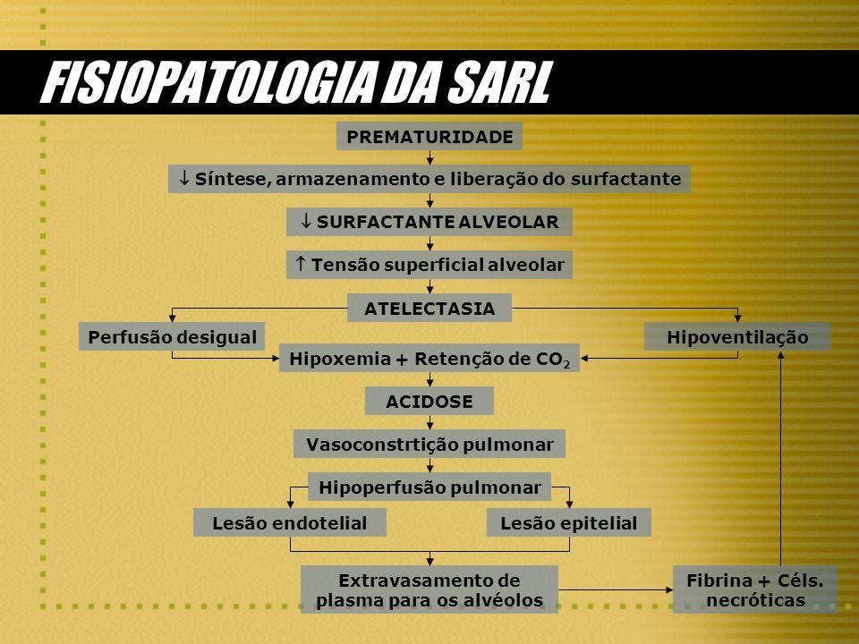 FISIOPATOLOGIA DA SARL PREMATURIDADE Síntese, armazenamento e liberação do surfactante SURFACTANTE ALVEOLAR Tensão superficial alveolar Hipoxemia + Re