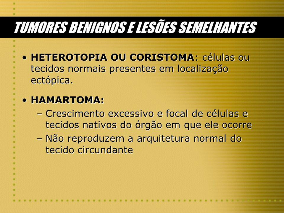 TUMORES BENIGNOS E LESÕES SEMELHANTES HETEROTOPIA OU CORISTOMA: células ou tecidos normais presentes em localização ectópica.HETEROTOPIA OU CORISTOMA:
