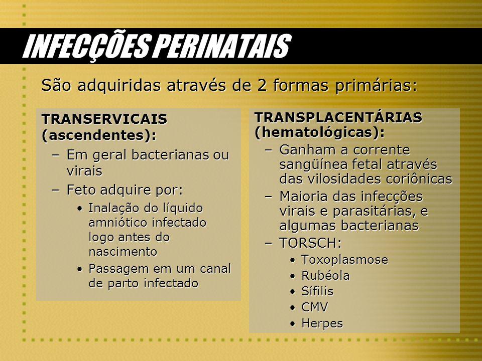 INFECÇÕES PERINATAIS TRANSERVICAIS (ascendentes): –Em geral bacterianas ou virais –Feto adquire por: Inalação do líquido amniótico infectado logo ante