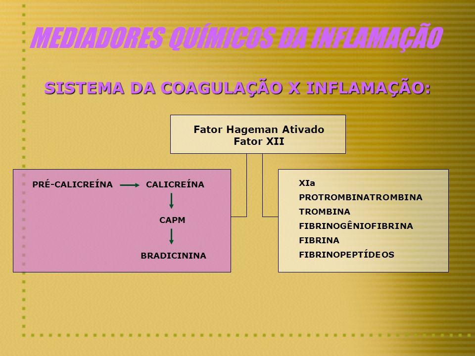 MEDIADORES QUÍMICOS DA INFLAMAÇÃO SISTEMA DA COAGULAÇÃO X INFLAMAÇÃO: Fator Hageman Ativado Fator XII XIa PROTROMBINATROMBINA TROMBINA FIBRINOGÊNIOFIB