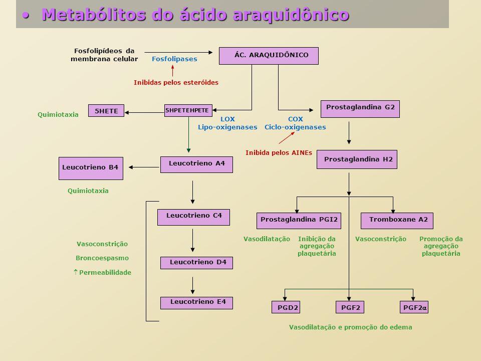 Metabólitos do ácido araquidônicoMetabólitos do ácido araquidônico ÁC. ARAQUIDÔNICO Fosfolipídeos da membrana celular Fosfolipases Inibidas pelos este