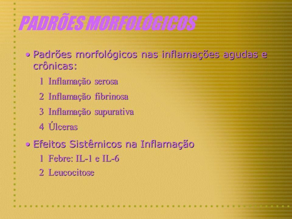 PADRÕES MORFOLÓGICOS Padrões morfológicos nas inflamações agudas e crônicas:Padrões morfológicos nas inflamações agudas e crônicas: 1Inflamação serosa